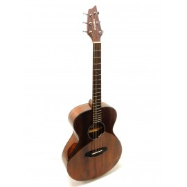 Breedlove Discovery concert MH -