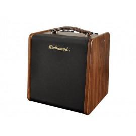 Richwood RAC-50 akoestische gitaarversterker -