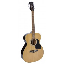Richwood Artist Series RA-12 -